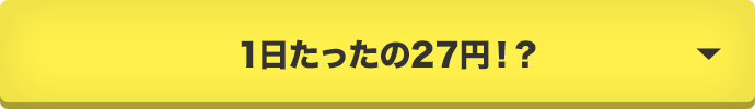 1日たったの27円!?